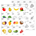 FRUITS playing cards vocabulary game